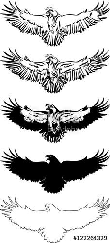 227x500 The Eagle, Soaring Eagle, Flying, Illustration, Color, Vector