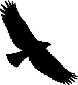 274x300 Bird Of Prey Clipart Soaring Eagle