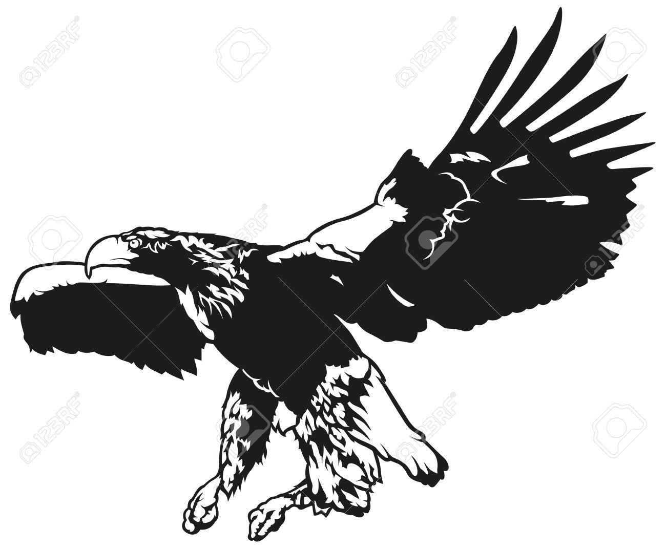 1300x1074 Bird Of Prey Clipart Soaring Eagle