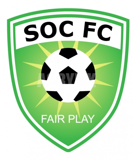 451x540 Green Soccer Shield Emblem Vector