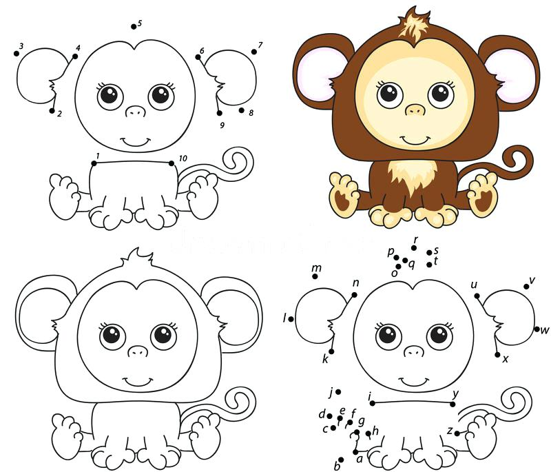 800x685 Harmonious O728064 Monkey Coloring Book Circus Elephant And Monkey
