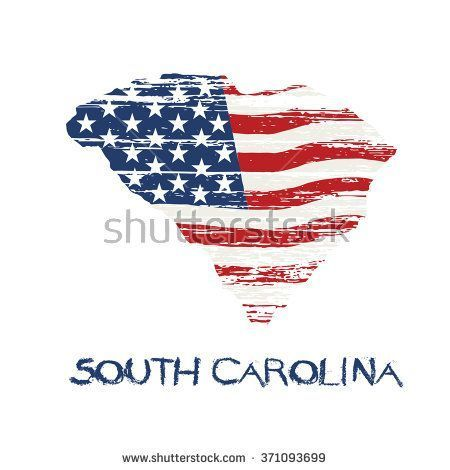 South Carolina Flag Vector