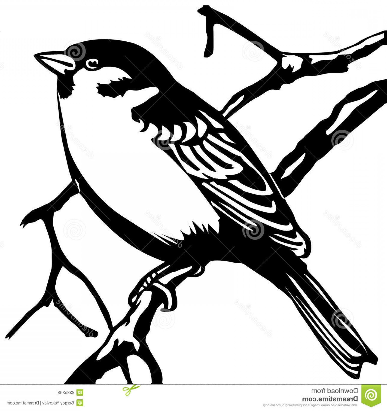 1560x1656 Royalty Free Stock Photos Vector Silhouette Sparrow Image Arenawp