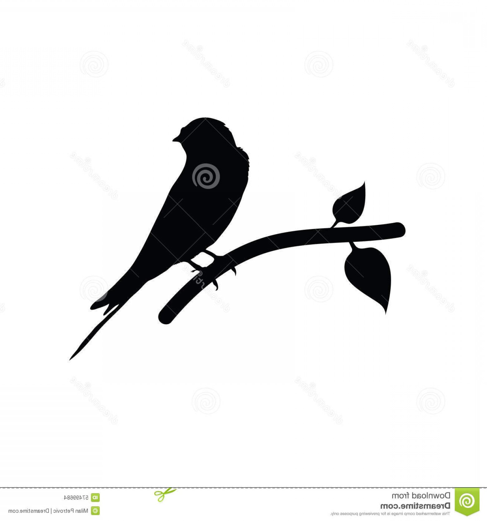 1560x1668 Stock Illustration Sparrow Black Vector Art Silhouette Image Arenawp