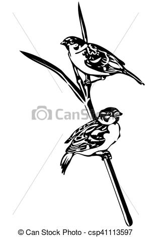 300x470 Black And White Vector Sketch Of A Little Bird On A Branch Sparrow.