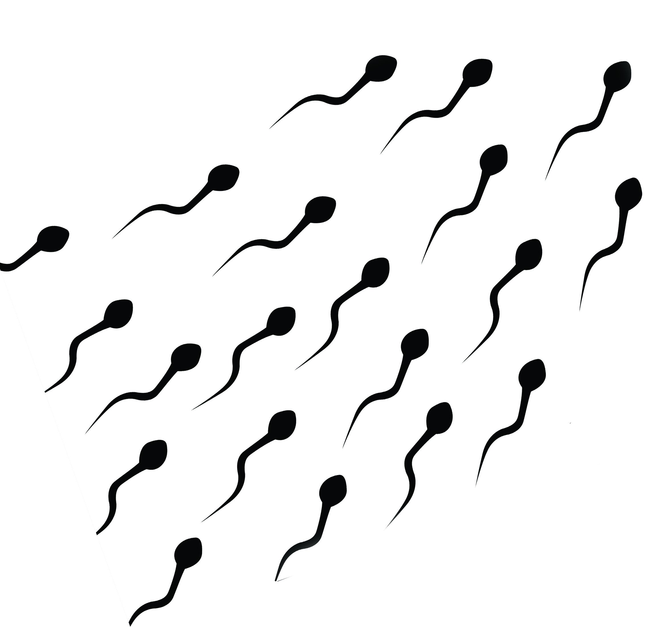 2319x2200 Best Sperm Wallpaper On Hipwallpaper Sperm Wallpaper, Sperm