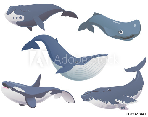 500x398 Big Set Of Cartoon Cute And Funny Whales, Sea Animals Set, Sea