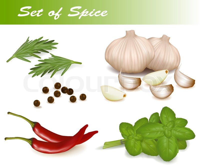800x660 Set With Spices. Vector Illustration. Stock Vector Colourbox