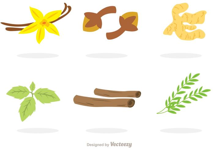 700x490 Collection Of Spices Vectors