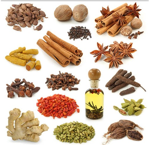 502x488 Spices Vector Graphic Ai Format Free Vector Download