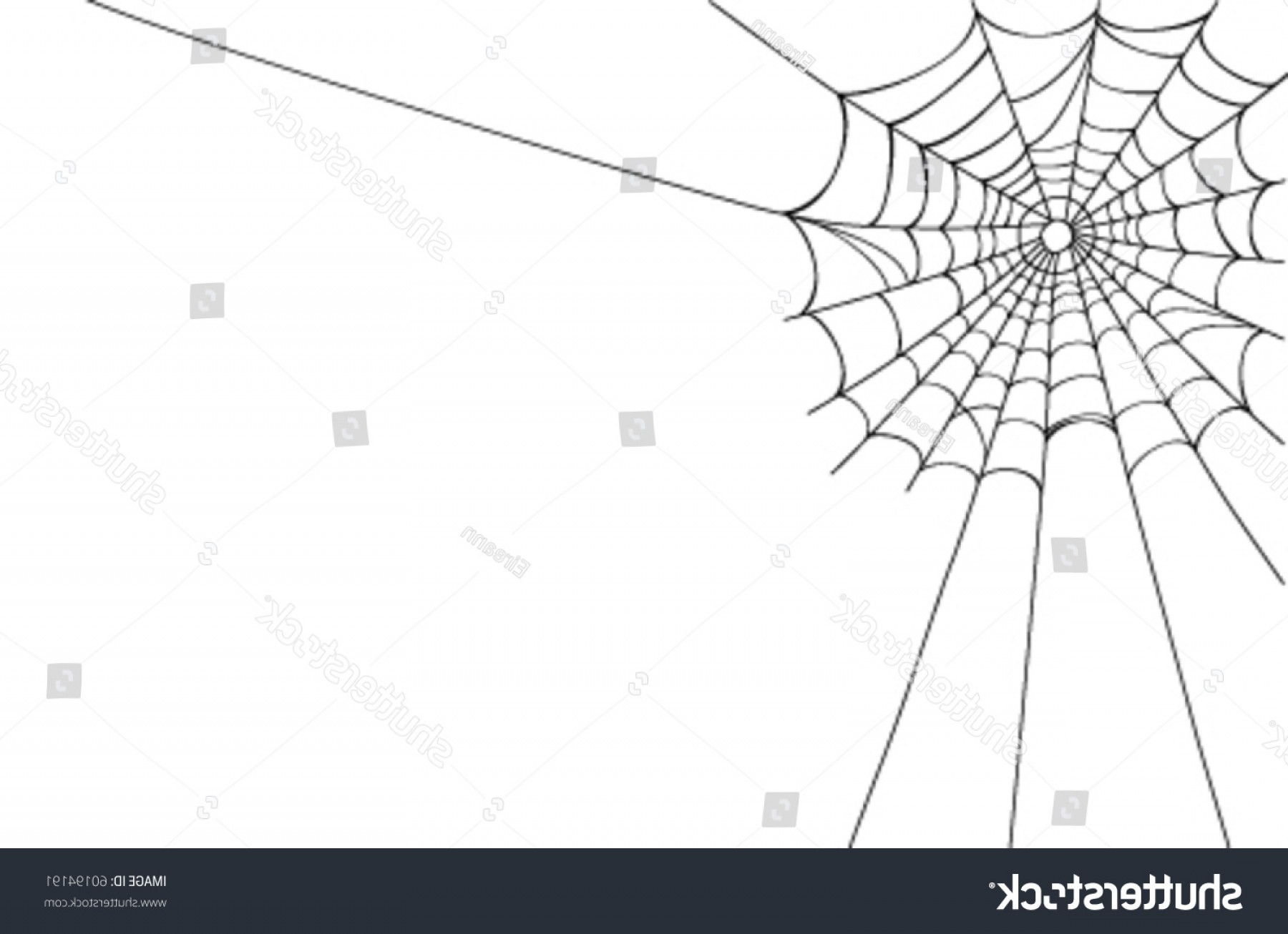 1800x1306 Creepy Spider Web Corner Vector Illustration Rongholland