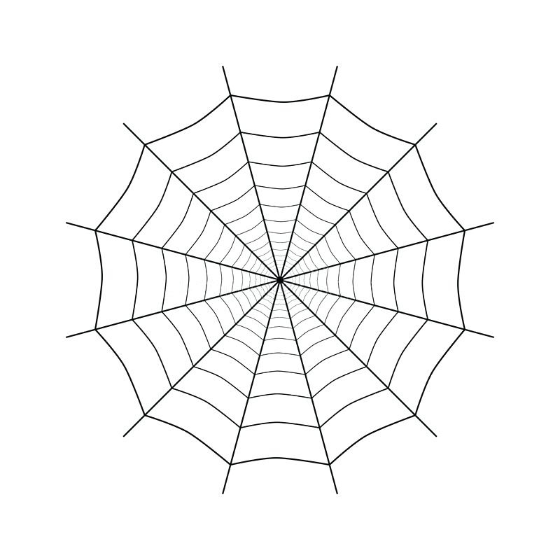 800x800 Spider Web Transparent Download Simple Spiderweb On White Stock