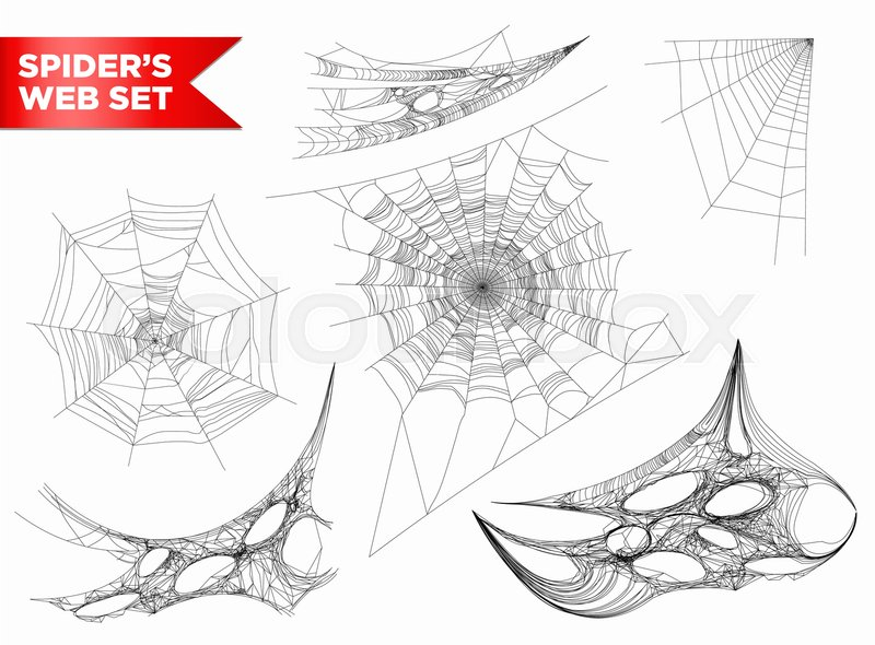 800x590 Spiderweb Or Spider Web And Cobweb 3d Icons Of Different Shapes On
