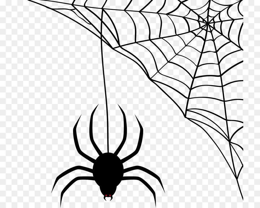 900x720 Spider Man Spider Web Scalable Vector Graphics