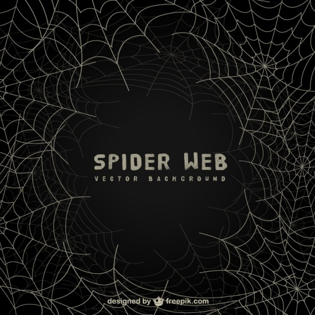 626x626 Spiderweb Vectors, Photos And Psd Files Free Download