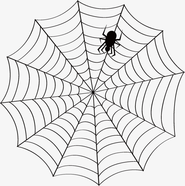650x654 Vector Spider Web, Spider Vector, Web Vector, Vector Png And