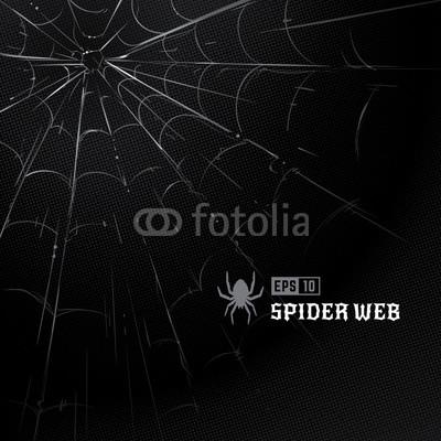 400x400 Vector Spider Web On Black Halftone Background. Hand Drawn Spider