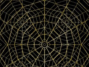 310x233 Spider Web Background Free Vector Free Vectors Ui Download