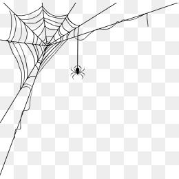 260x260 Spider Web Png, Vectors, Psd, And Clipart For Free Download Pngtree