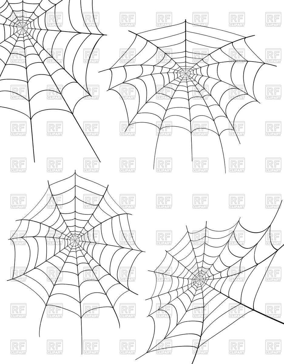 936x1200 Spider Web Illustration Isolated On White Background Vector Image