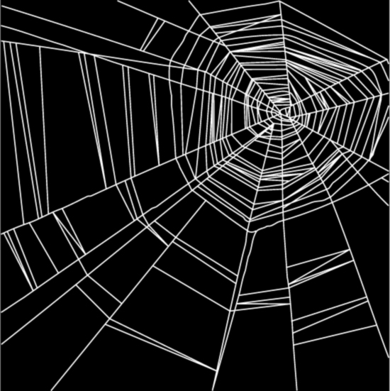550x551 Spider Web Vector Material Free Download Web