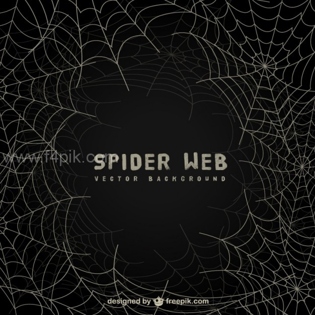 626x626 Vector ] Spider Web Background On Blackboard Free Download