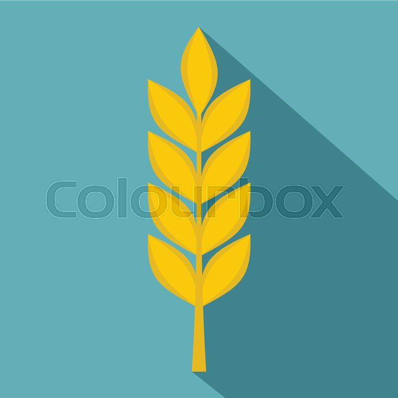800x800 Wheat Spike Icon. Flat Illustration Of Wheat Spike Vector Icon For