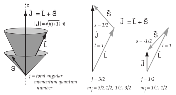 600x327 Vector Model Of Angular Momentum
