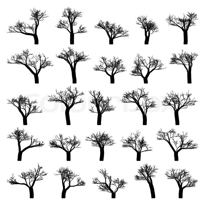 800x800 Spooky Tree Silhouette Vector Isolated On White Stock Vector