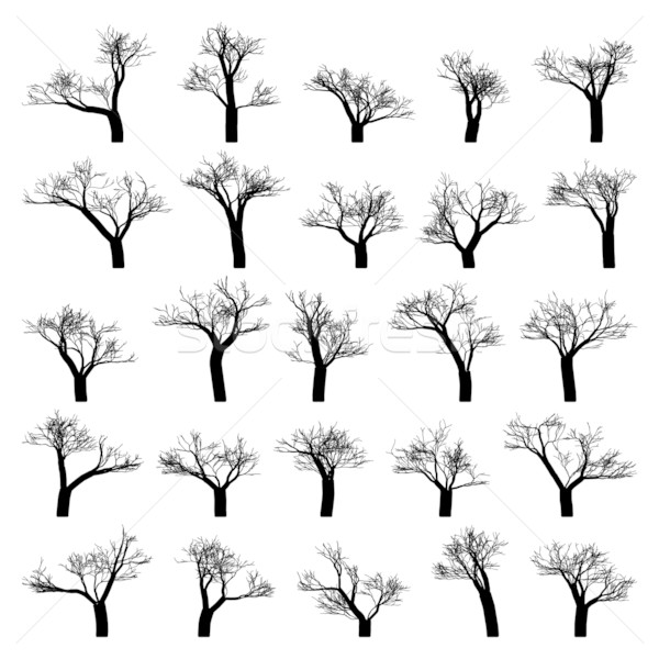 600x600 Spooky Tree Silhouette Vector Isolated. Eps 8 Vector Illustration