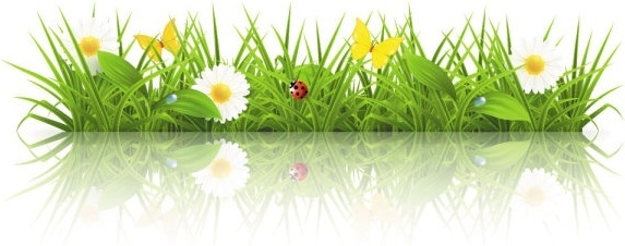 573x226 Spring Free Vector Download (2,180 Free Vector) For Commercial Use