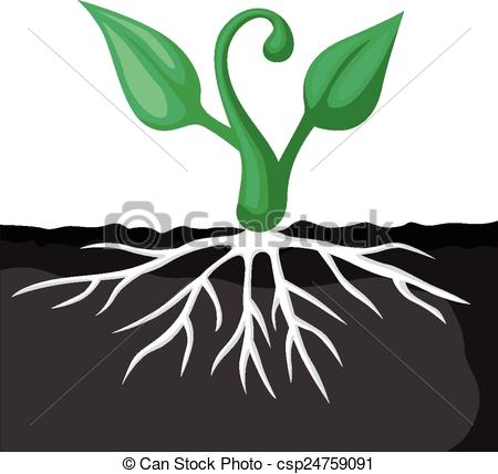 450x428 Cartoon Plants Sprout. Vector Illustrations Of Set Of Cartoon