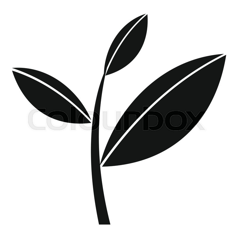 800x800 Tea Leaf Sprout Icon. Simple Illustration Of Tea Leaf Sprout