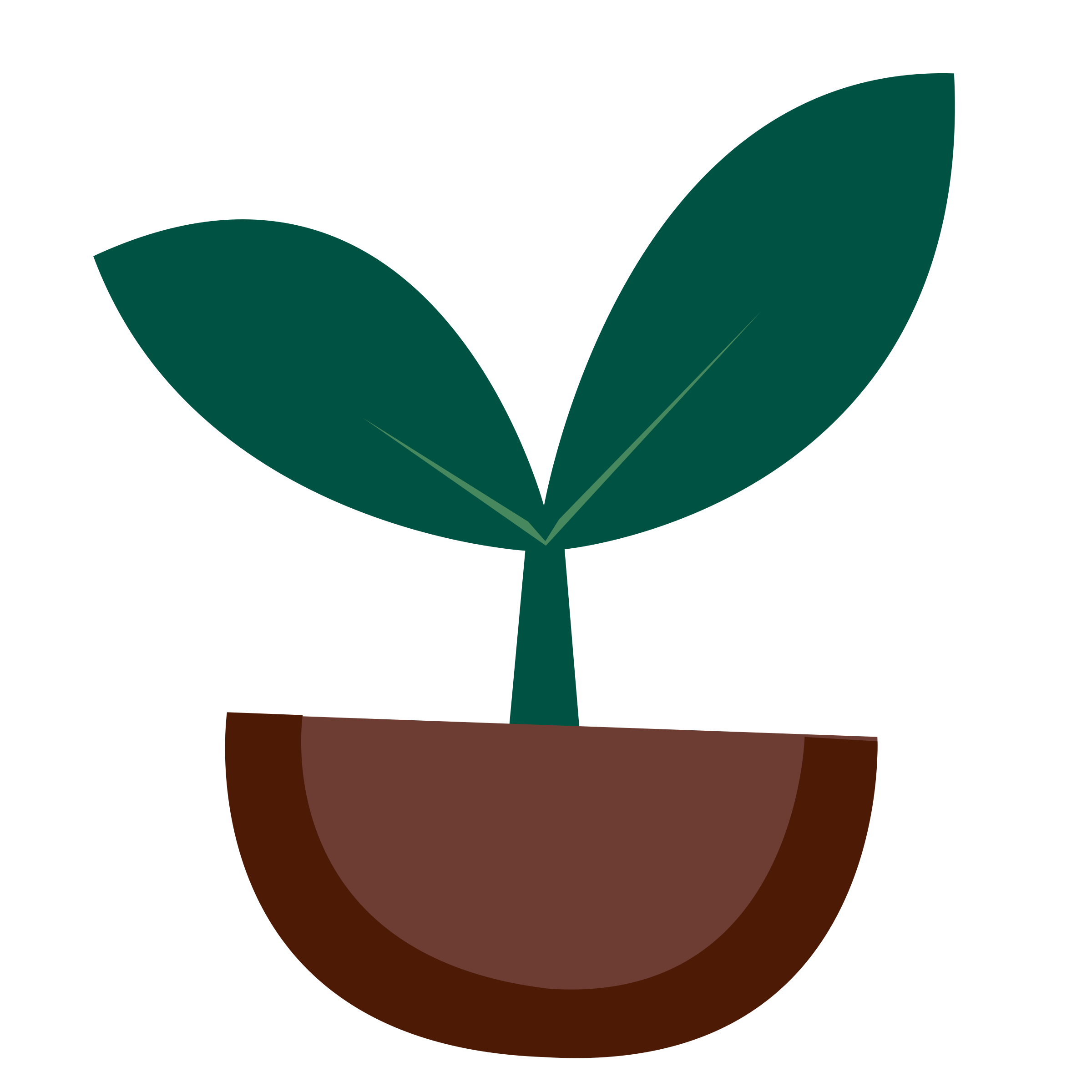 2400x2400 Collection Of Free Sprout Vector Coconut. Download On Ubisafe