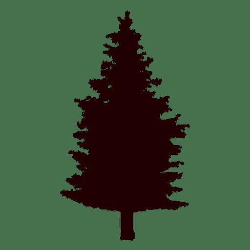 512x512 Fir Tree Vector