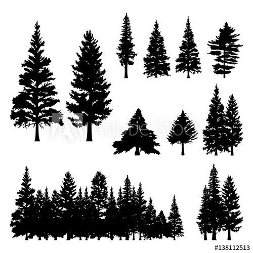 500x500 Pine Fir Forest Conifer Coniferous Tree Silhouette