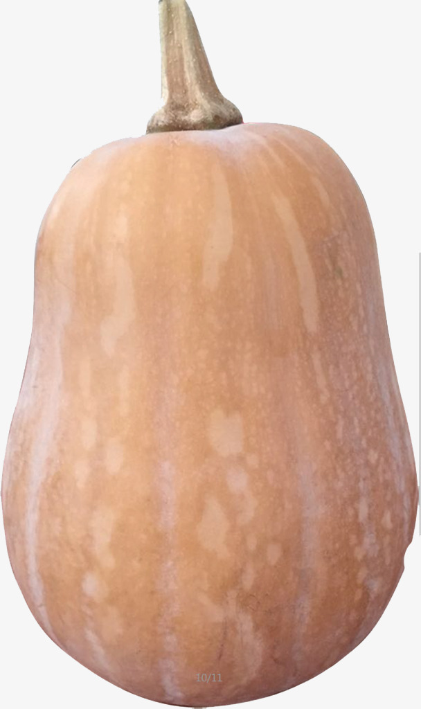608x1024 Gourd Like Squash, Pumpkin, Vector, Product Kind Png And Vector