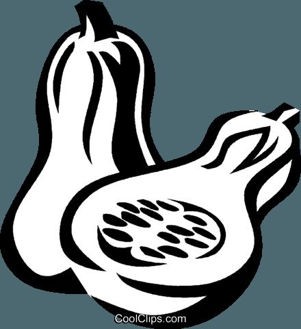 440x480 Butternut Squash Royalty Free Vector Clip Art Illustration