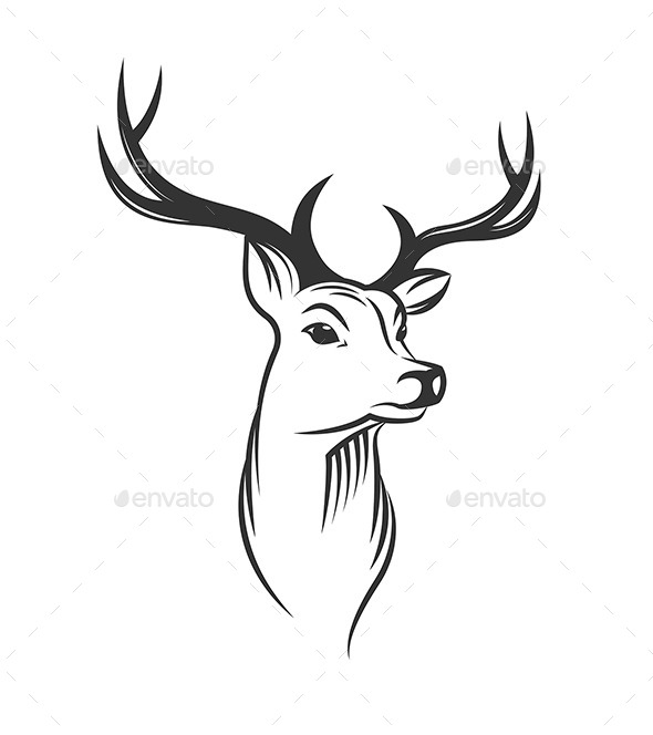 590x664 Deer Head On White Background By Teneresa Graphicriver