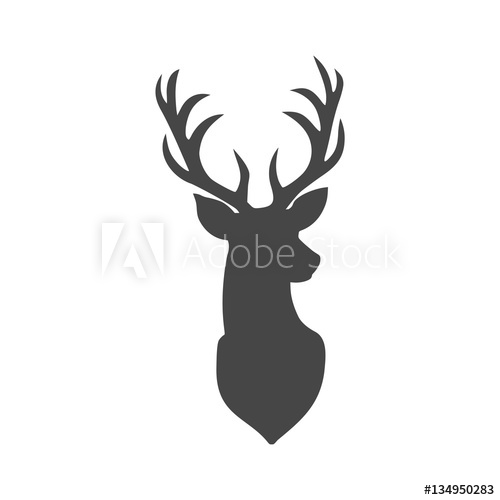 500x500 Deer Head Illustration Vector