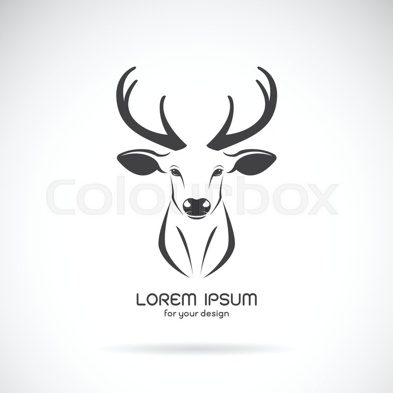 800x800 Vector Image Of A Deer Head Design On White Background, Vector