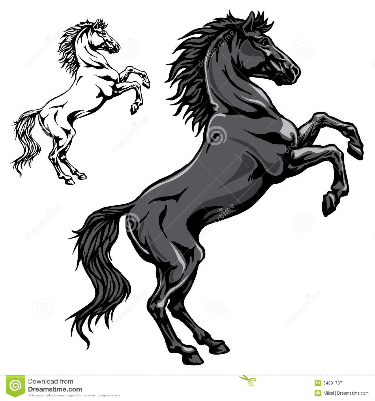 Standing Horse Vector