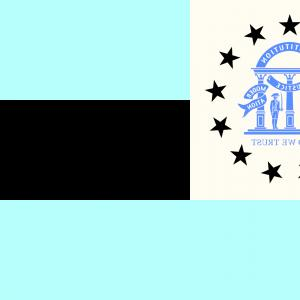 300x300 Photostock Vector Georgia State Vector Flag Or Coat Of Arms