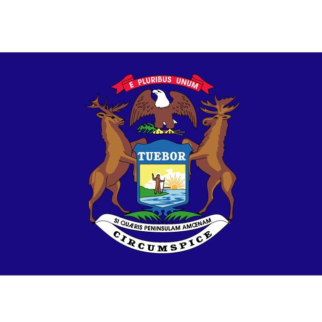 660x660 Michigan Vector Flag