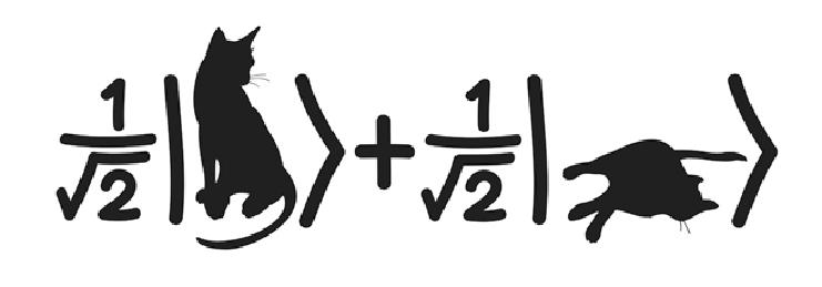 741x259 Cat State Vector. Download Scientific Diagram
