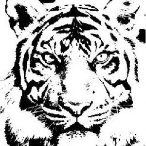 300x300 Stencil