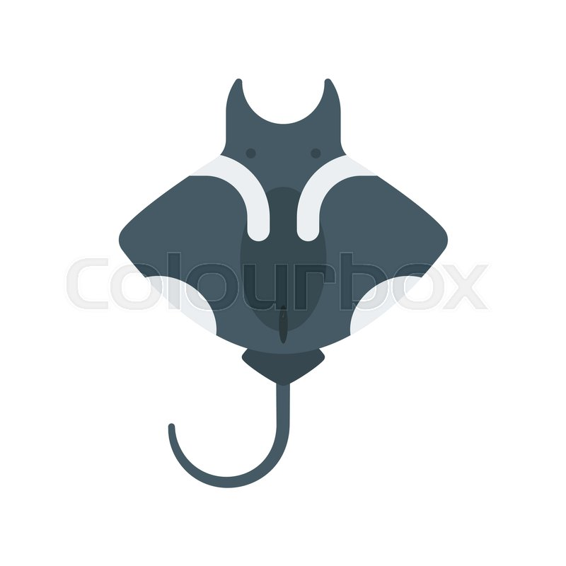 800x800 Vector Flat Style Illustration Of Stingray. Icon For Web. Isolated