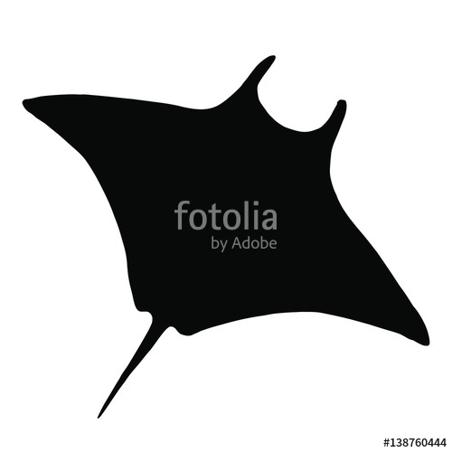 500x500 Vector Stingray Silhouette, Ray Fish Illustration. Animal In The