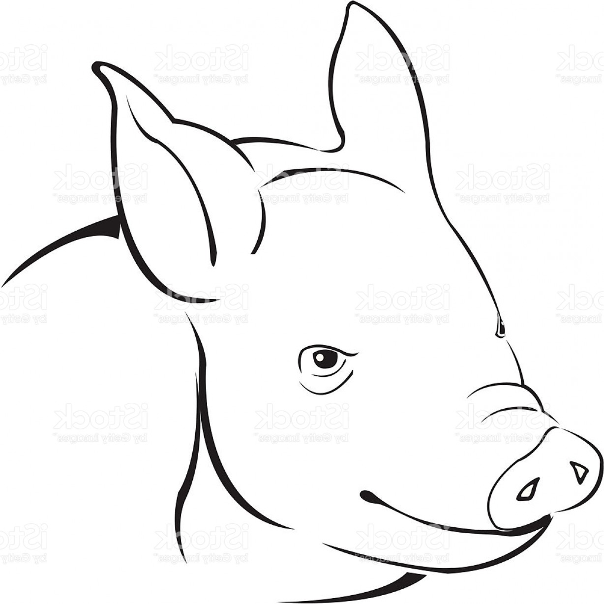 1228x1228 Suddenly Simple Pig Drawing Stock Vector Art More Images Of Animal