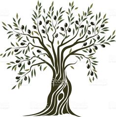 236x239 Olive Tree Vector Illustration In 2018 Stencils